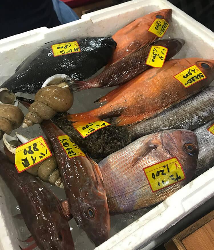 鮮魚の宝箱